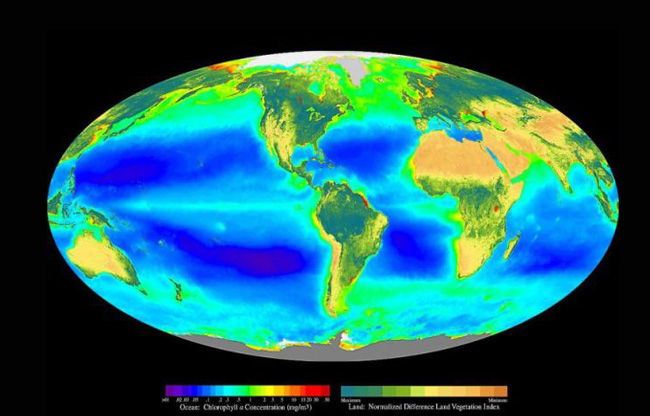 """NDVI (on land) and chlorophyll concentration (in the oceans). by Blue Marble Research"